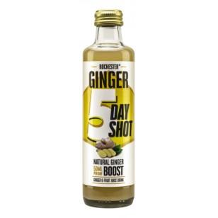 Natūralus imbierinis gėrimas su vaisių sultimis 5 DIENOMS, 250ml